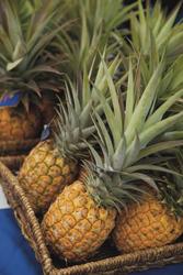 Frische Ananas, ©Dana Edmunds
