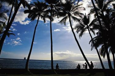 Blick auf den Strand, Maui, ©Hawaii Tourism Authority