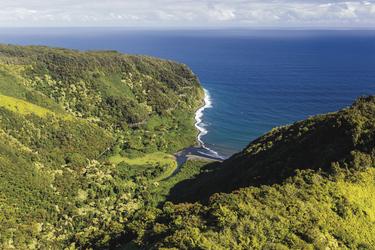 In den Bergen von Maui, ©Tor Johnson