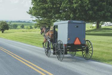Amische in Pennsylvania, ©Shutterstock - AAT Kings
