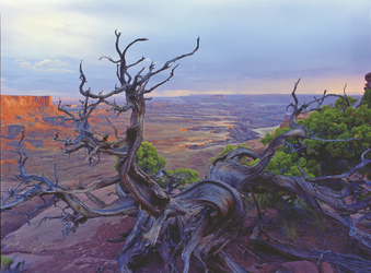 Canyonlands Nationalpark - ©Utah Office of Tourism_Tom Till