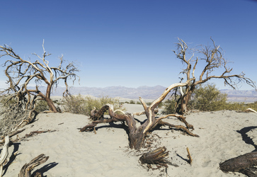 Death Valley Nationalpark - ©Visit California/Carol Highsmith
