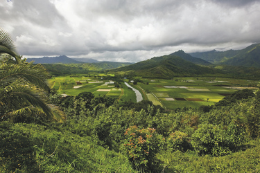 Grüne Landschaft bei Hanalei auf Kauai - ©Tor Johnson