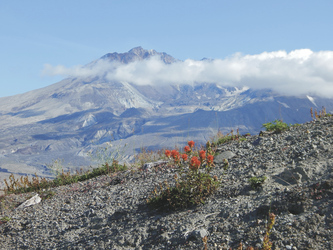 Mount St. Helens, Washington State - ©TravelDreamWest, ©TravelDreamWest