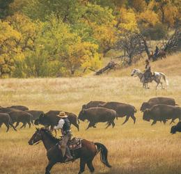 Farmer in Wyoming