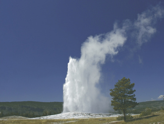 Old Faithful Geysire im Yellowstone NP