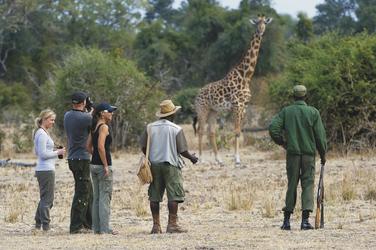 ©©Dana Allen www.photosafari-africa.com