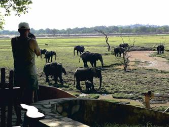 Tierbeobachtung von der Kafunta River Lodge, ©Kafunta River Lodge