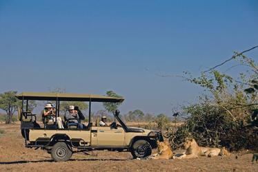 Löwenbeobachtung im Süd Luangwa Nationalpark