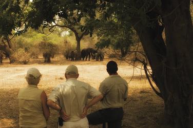 Kanga Bush Camp Buschwanderung