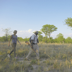 Buschwanderung im Hwange NP, ©Elephant´s Eye Safari Lodge