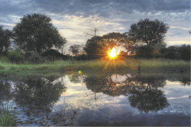 ©Imvelo Safari Lodges