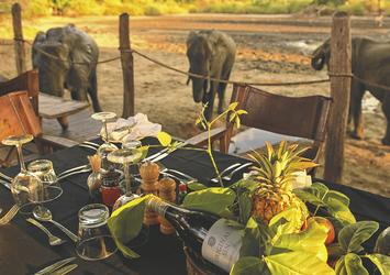 Tierbeobachtung vom Kanga Bush Camp