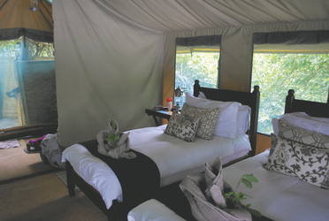 Kanga Bush Camp